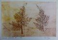Fractal trees 8 1 of 50 by Rosario de Mattos