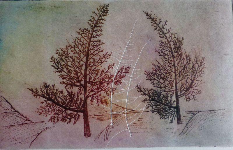 Fractal trees 8 Author's test 2 of 5 by Rosario de Mattos