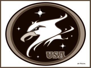 "UNITED STATES sport shield ""GUARDIANS OF THE NIGHT"" NFL by PACHI"