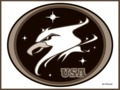"UNITED STATES sport shield ""GUARDIANS OF THE NIGHT"" by PACHI"