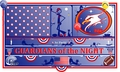 "UNITED STATES NFL banner ""GUARDIANS of the NIGHT"" by PACHI"