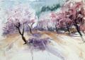 Almond blossom by Juan Félix Campos