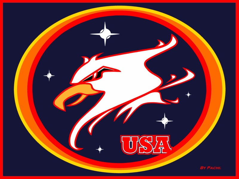 """UNITED STATES sport shield """"GUARDIANS OF THE NIGHT"""" NFL by PACHI"""
