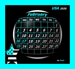 "2020 calendar banner ""USA"" by PACHI"