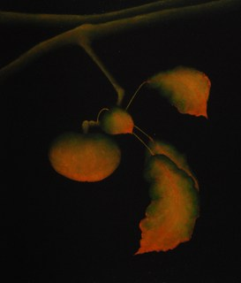 Apple Composition  #3 by Carolyn Adams