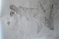 The Levitating by Ricardo Hirschfeldt