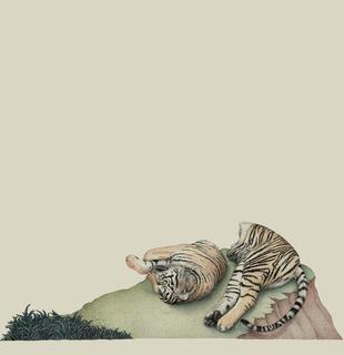 Untitled (Tiger) by Vasilios Paspalis