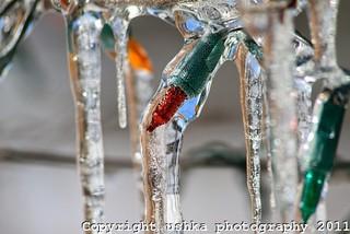 frozen x-mas lights by Ushka Shakhnis