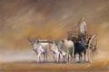 Entre viento y tierra by Nacho Quiroga