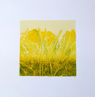 Yellow process and white by Nelly Arias