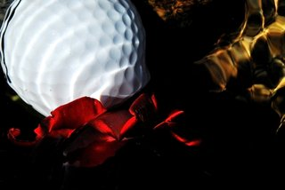 Red, gold and golf II by Brandan