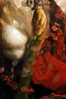 Garlic and asparagus III by Brandan
