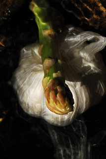 Garlic and asparagus I by Brandan