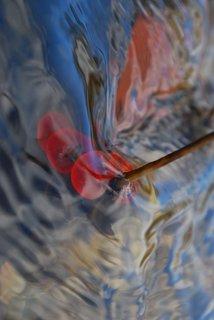 Vertical brushstroke II by Brandan