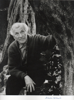 Portrait of the artist Marc Chagall by Denise colombe