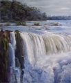 waterfall  Iguazú by Rosario de Mattos