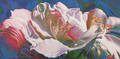Goblet of abundance by Lucyna Machowska