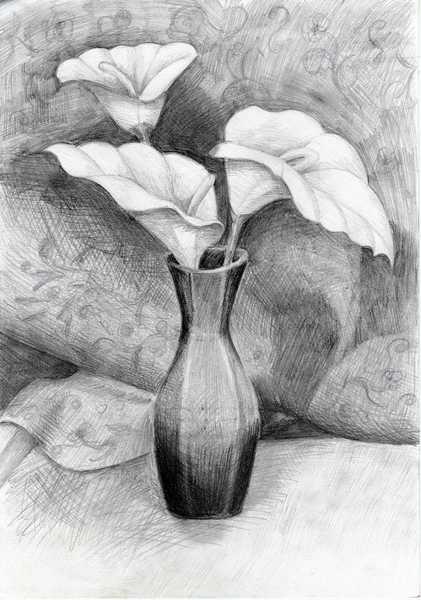 Calla Lilies Original Art by Tatyana Bondareva  PicassoMio
