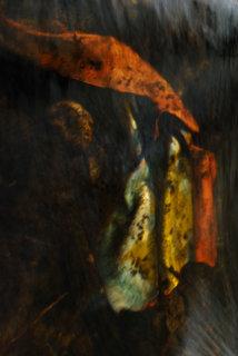 Priests of Atis by Brandan