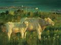 Cows overlooking Doolin Harbour, County Clare by Pip Todd Warmoth