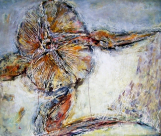 Echinodermata by Traian Stefan Boicescu