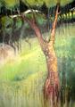 Tree by Alex Mackenzie