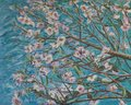 Almond blooming by Moti Lorber