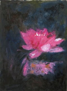 Water lily night night by Mania Row
