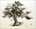Old Oak II by Karl de Vroomen