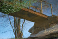 The tree at the end of the bridge by Brandan