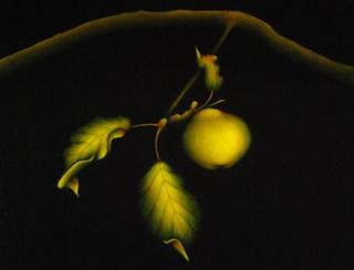 Apple Composition  #2 by Carolyn Adams