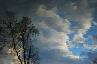 Blue transition by Brandan