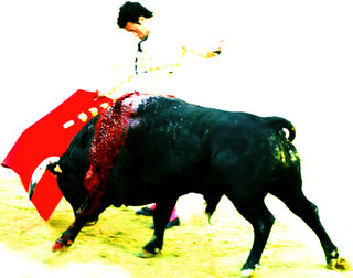 tauromachie - assalto ##2 by Eduardo C. Grimaldi