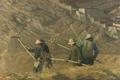 Early Evening Harvesting, Tibet by Pip Todd Warmoth
