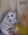 White Dog by Scott Andrew Spencer