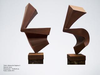 Organic abstraction 2 by Roberto Canduela Luengo