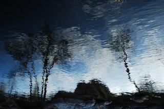 Dusk by Brandan