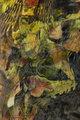 Little green man by Brandan