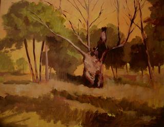 Trees2 by Antonio Abad