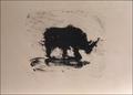 Rhinocerós by Miquel Barceló