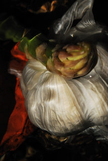Garlic and asparagus II by Brandan