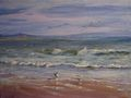 Gulls on the shore by Rosario de Mattos