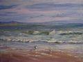 Gulls on the shore by Rosario de Mattos