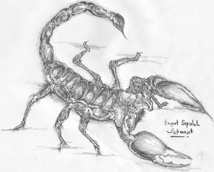 Scorpion Original Art By Ilham Perkasa Picassomio