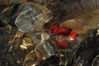 Pearl essence by Brandan