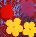 Flowers IX by Andy Warhol