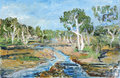 RiverTodd by Joan de Bot