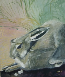 Hare resting at Montsale by Mania Row