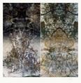 Roble I / Huilquilemu Series by Alexander Sutulov