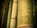 Serie Japan'10-11: Coeur en bambou by Sonia A. Alzola
